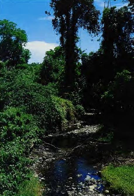 Ville de Lae, Province Morobe, Papouasie Nouvelle Guinée